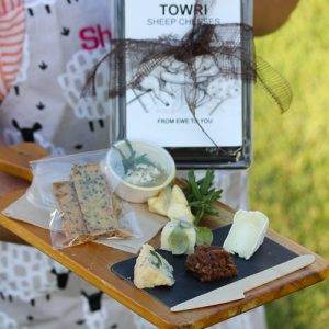 Isolation Sheep Cheese Taster Pack
